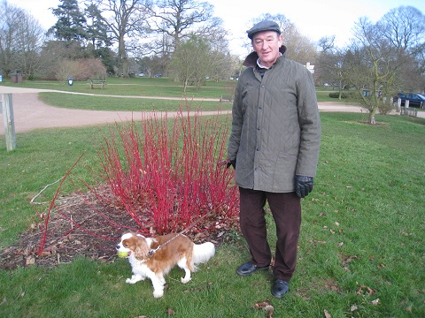 David Charlie and Dogwood