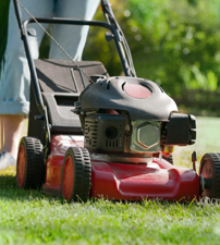 Avoid mowing your lawn more than twice a week