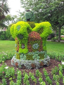 Royal Jubilee Topiary